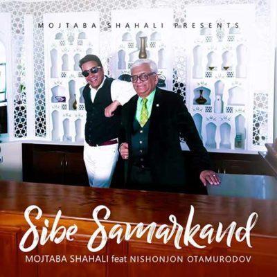 دانلود آهنگ جدید مجتبی شاه علی سیب سمرقند (از باغ چمن یک گل دلارام و بیارید)