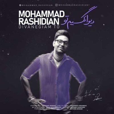 دانلود آهنگ جدید محمد رشیدیان دیوانگیم تو (درماندگیم تو سهم دل رسوا)
