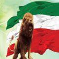 دانلود آهنگ ای ایران ای مرز پر گهر با صدای کودکان (سرود دانش آموزان)
