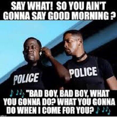 دانلود آهنگ باب مارلی پسران بد Bad boys (Whatcha gonna do)