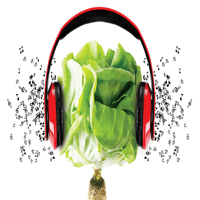 دانلود آهنگ مناسب برای رشد گیاهان