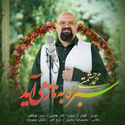 دانلود آهنگ محمد حشمتی سبزه به ناز می آید - جدایی ها به من زودتر رسانش