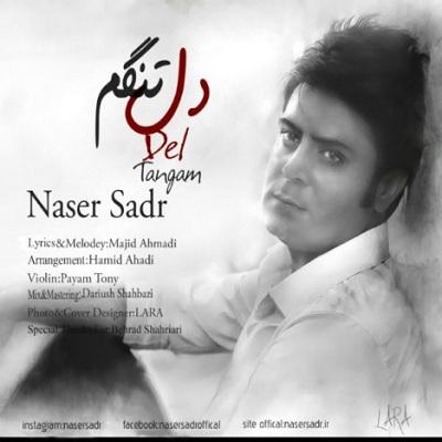 دانلود آهنگ ناصر صدر دلتنگم