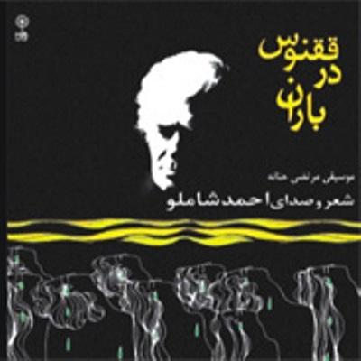 دانلود آلبوم احمد شاملو ققنوس در باران