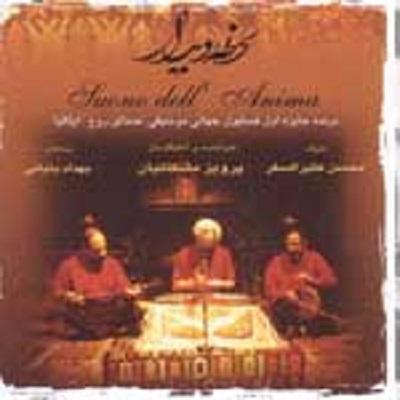 دانلود آلبوم پرویز مشکاتیان لحظه دیدار (بی کلام)