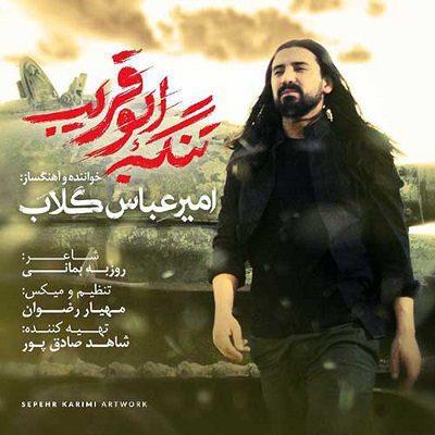 دانلود آهنگ جدید امیر عباس گلاب تنگه ابوقریب (تیتراژ فیلم)